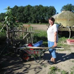 Vorbereitung zur Gemüseernte