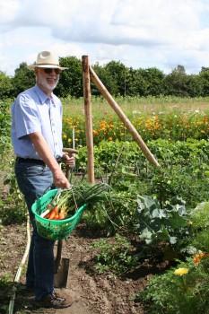 Gemüseernte direkt vom Acker