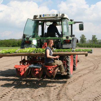 Aussaat per Traktor